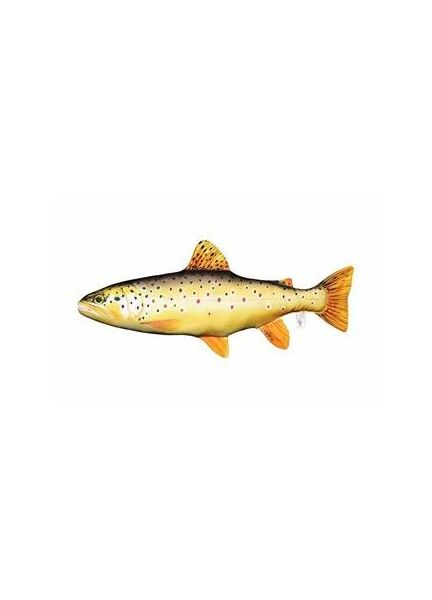 fishing fish wsb carp p tackle gaby pillows camping gone pillow trout